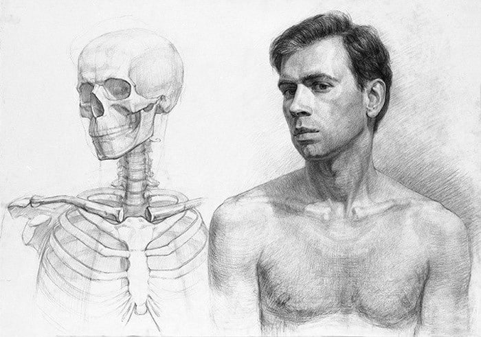 How To Practice Drawing Anatomy: The Essential Guide