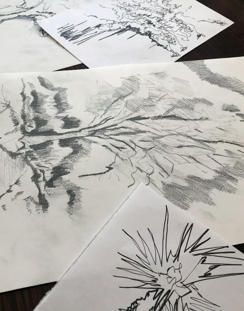 Best Books For Drawing Landscape