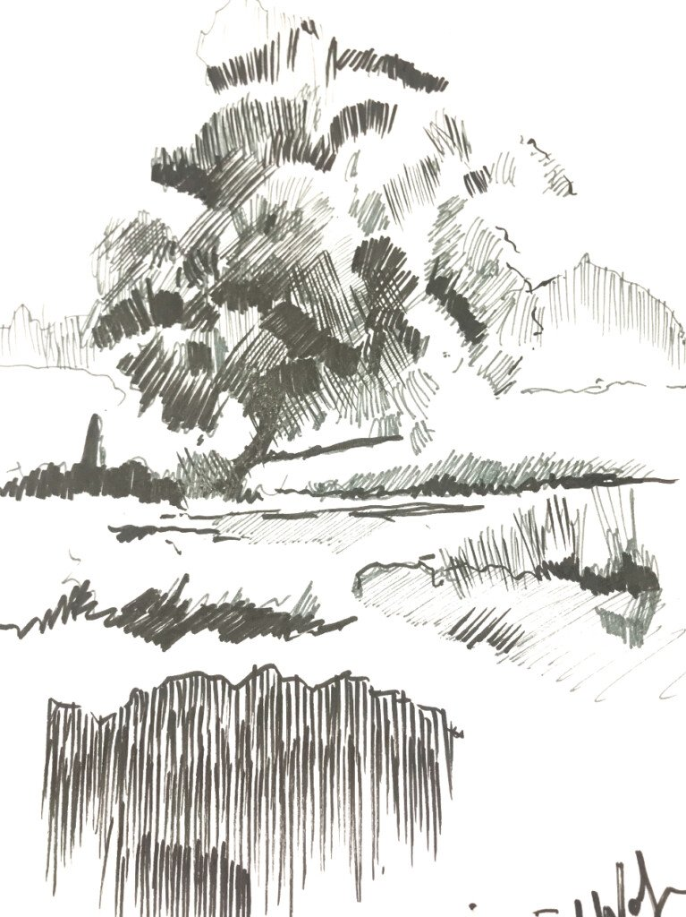 How to Draw Landscapes in Pen and Ink