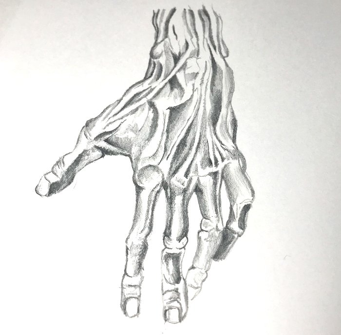 Drawing Ideas based on Hands