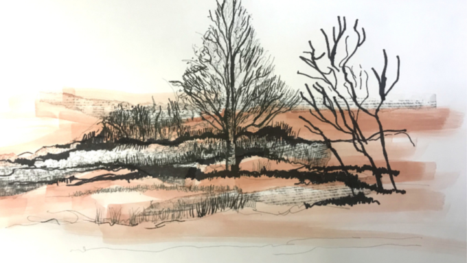 Creating Textured Drawings