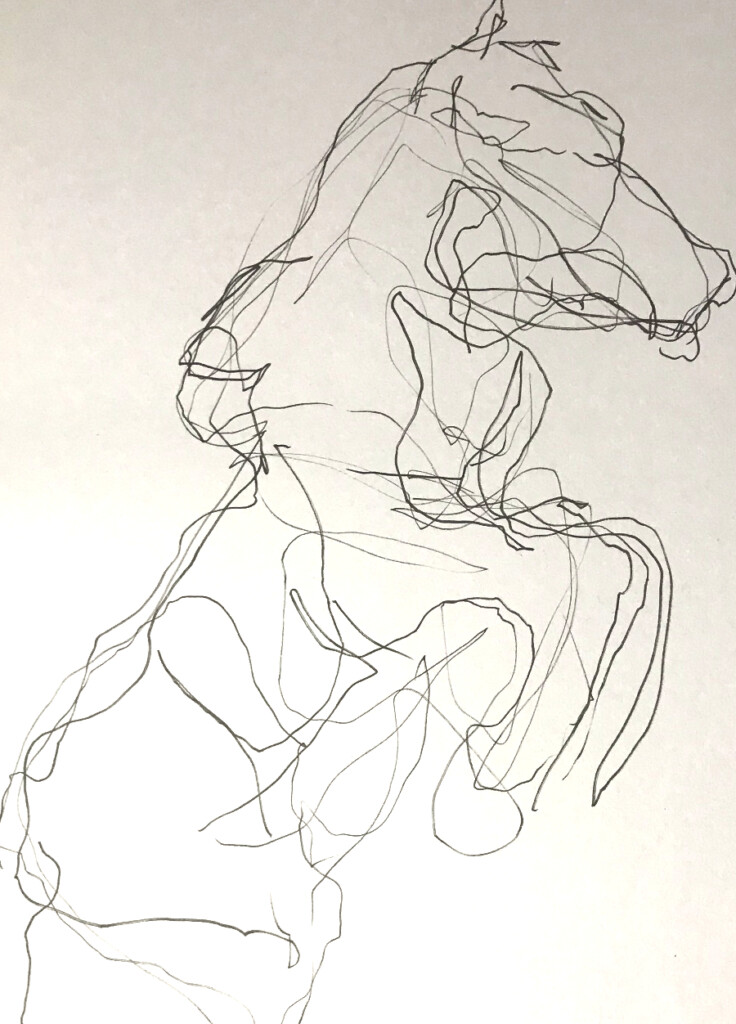 Introduction to Blind Contour Drawings