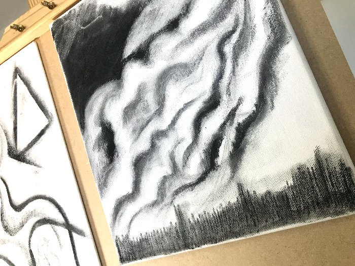 Can You Draw With Charcoal on Canvas