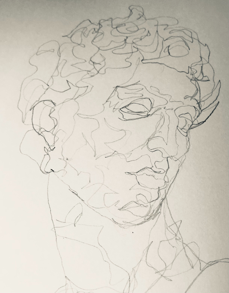 Continuous Line Drawing of the Head and Face